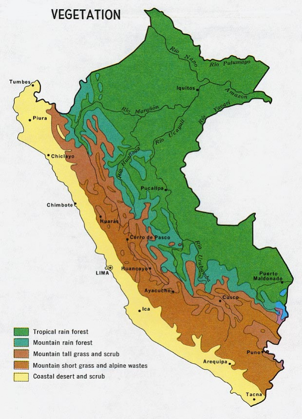 Peru Vegetation Map