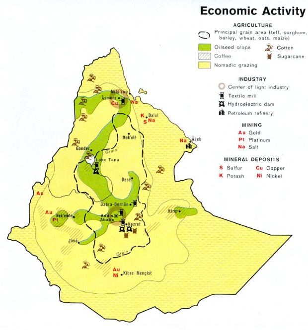 Ethiopia Economic Activity Map