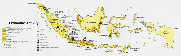 Indonesia Economic Activity Map