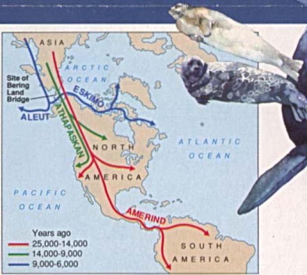 Primeras Rutas Migratorias Americanas
