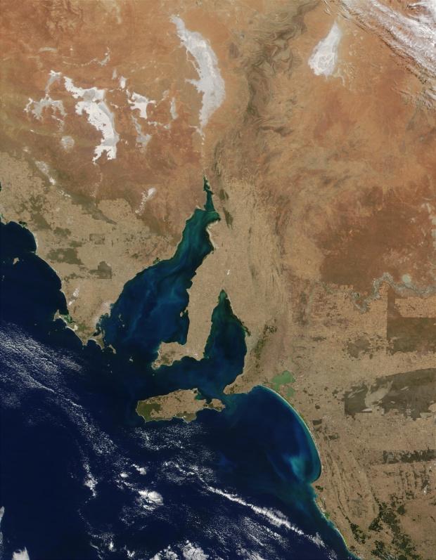 Proliferación de fitoplancton en el golfo de Spencer, golfo St. Vincent y bahía Lacepede, sur de Australia