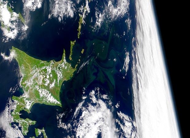 Proliferación marina al este de Hokkaido