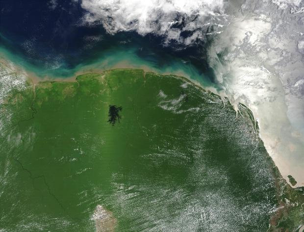 Punto caliente de vegetación en Surinam