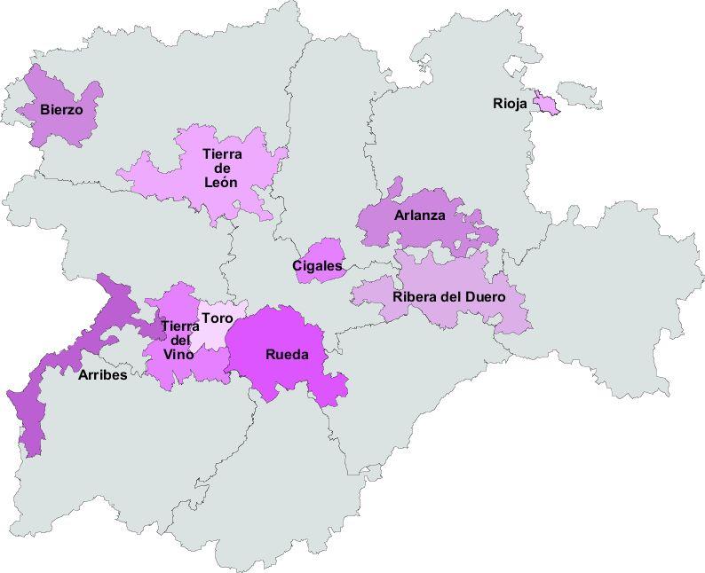 Vinos de Castilla y León 2008
