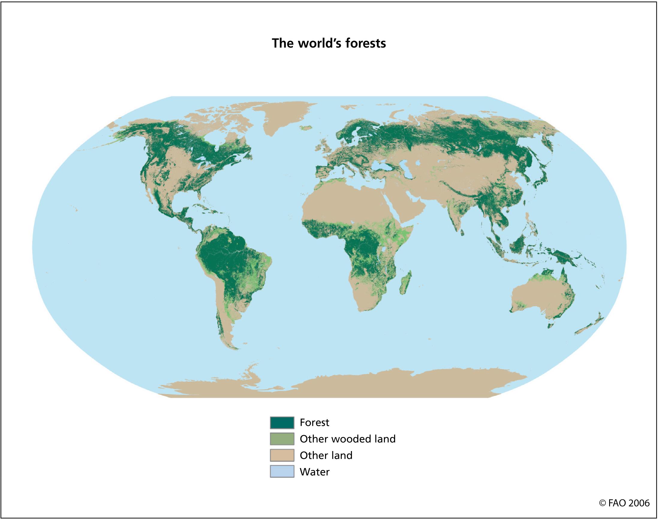 Los bosques del mundo 2006