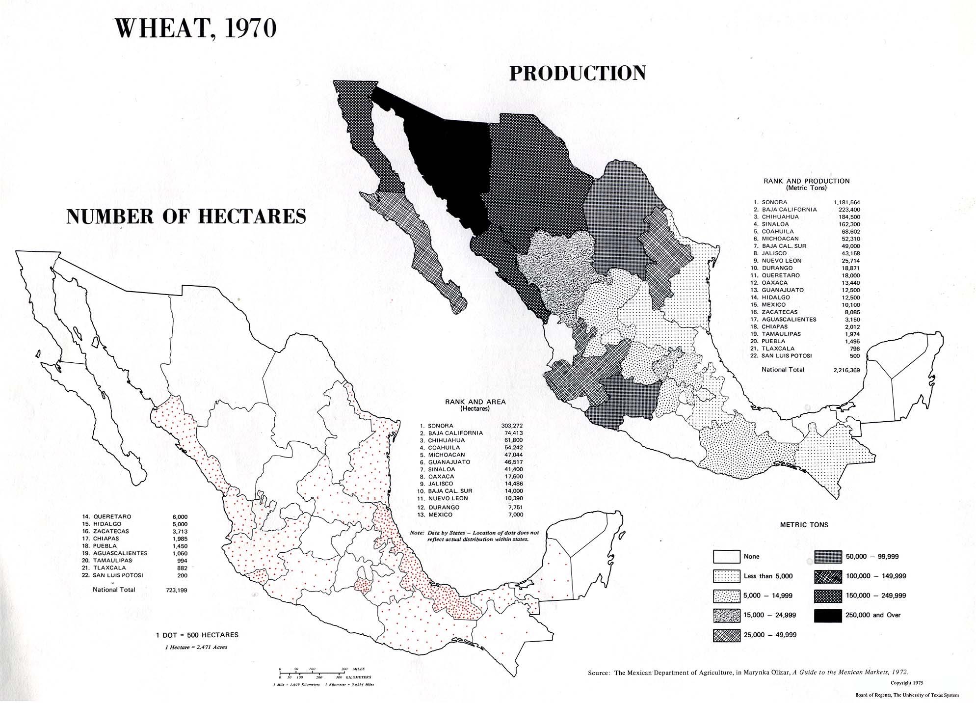 Mapa de Producción de Trigo en México 1970