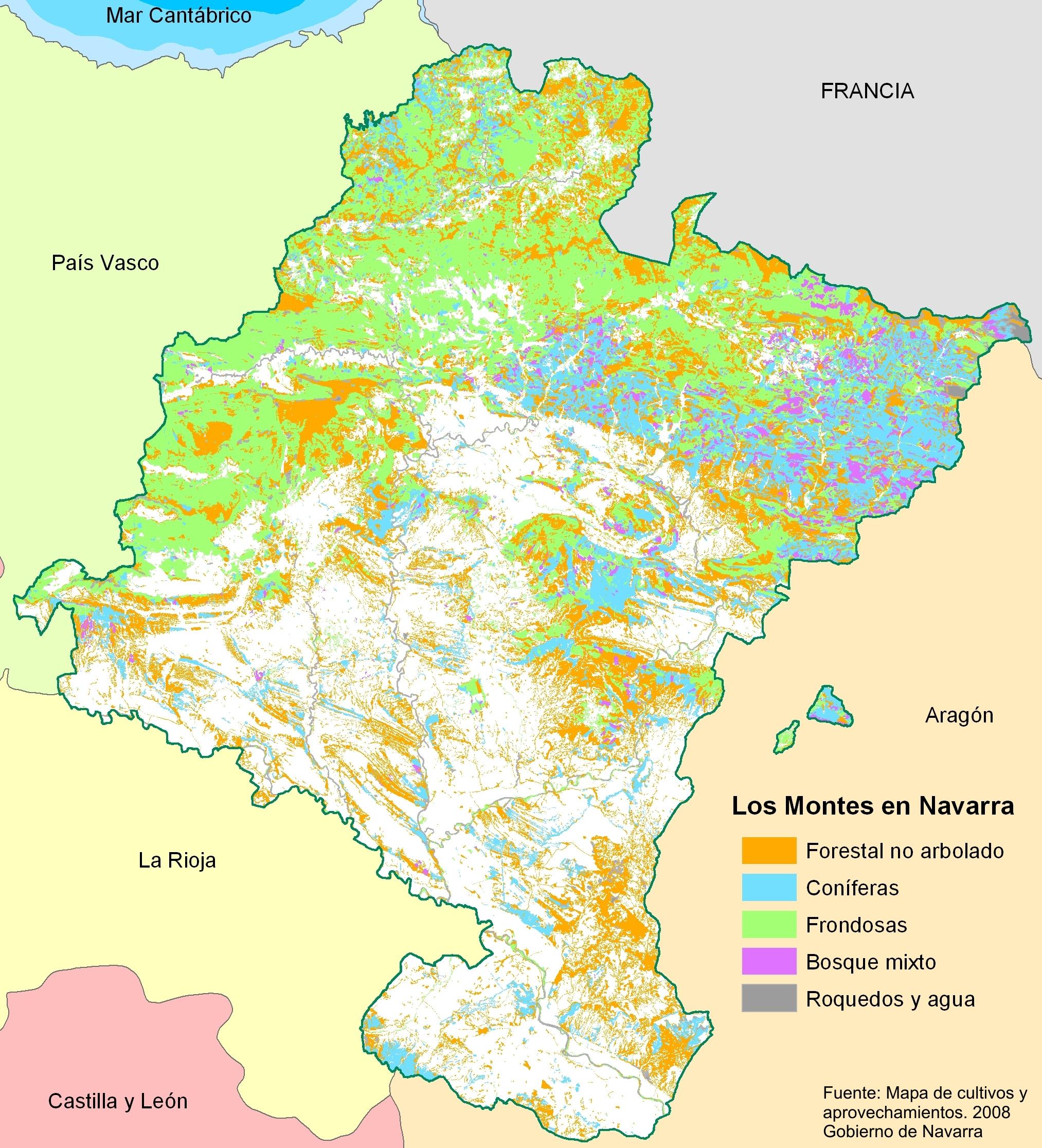 Mapa Forestal de Navarra 2008