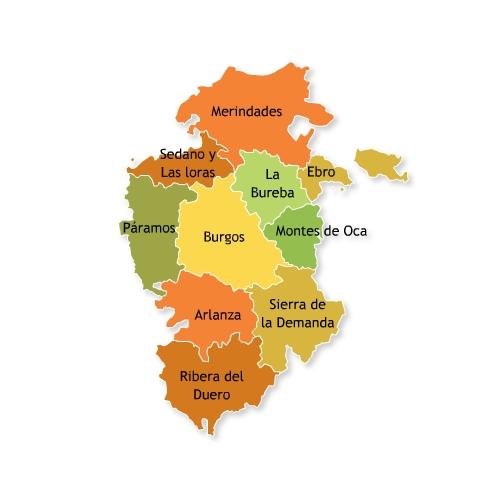 Comarcas of the province Burgos