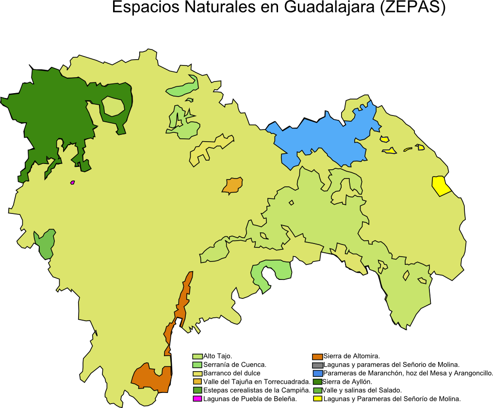 Special Protection Areas for birds in the Province of Guadalajara (ZEPA) 2008