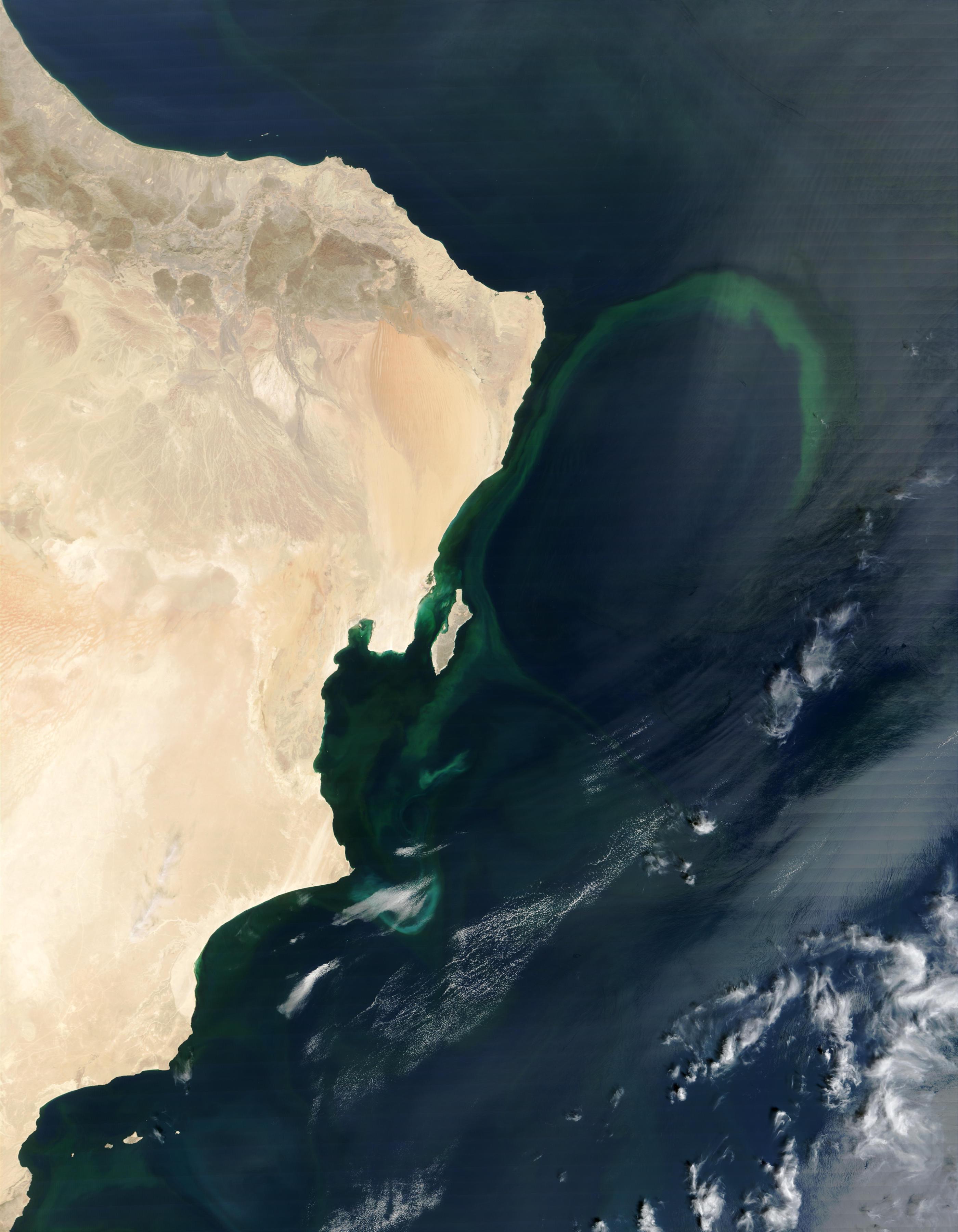 Aguas verdes cerca de Omán en el Mar Arábigo