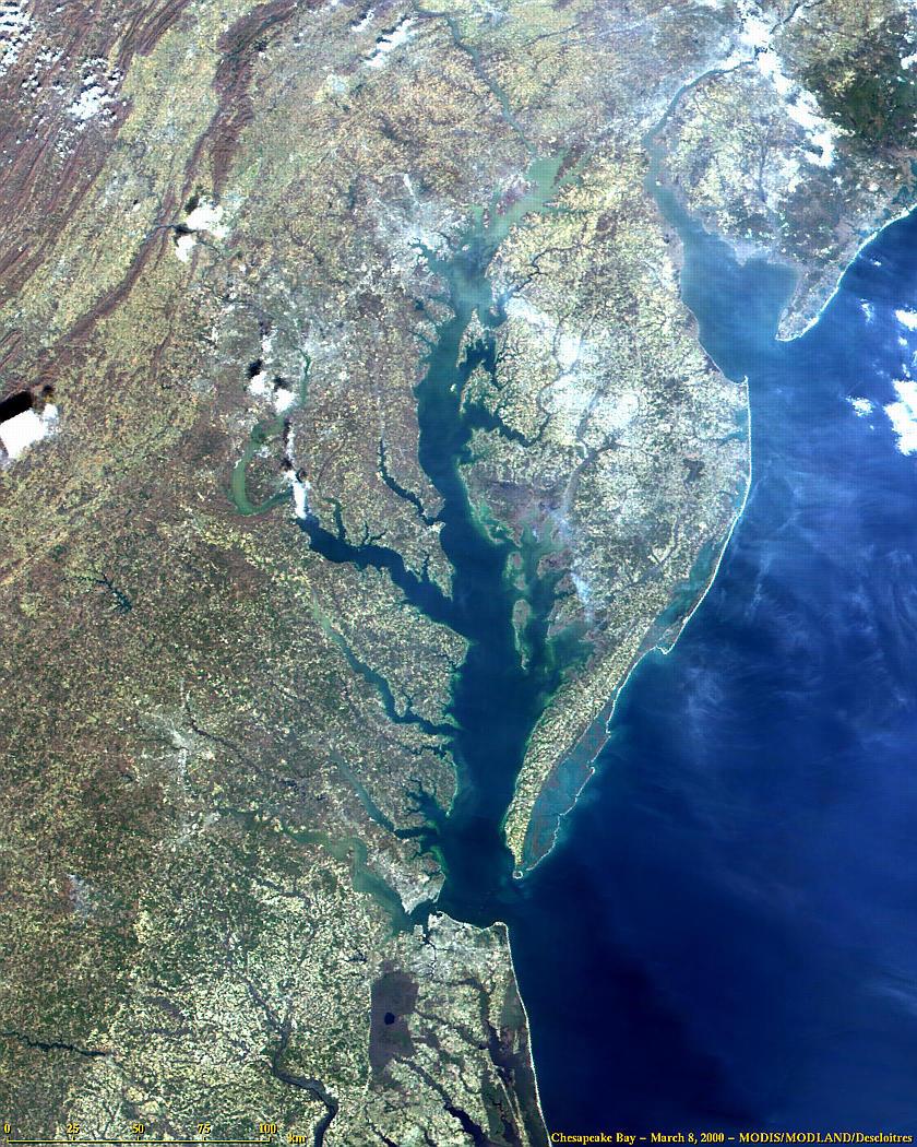 Chesapeake Bay from MODIS