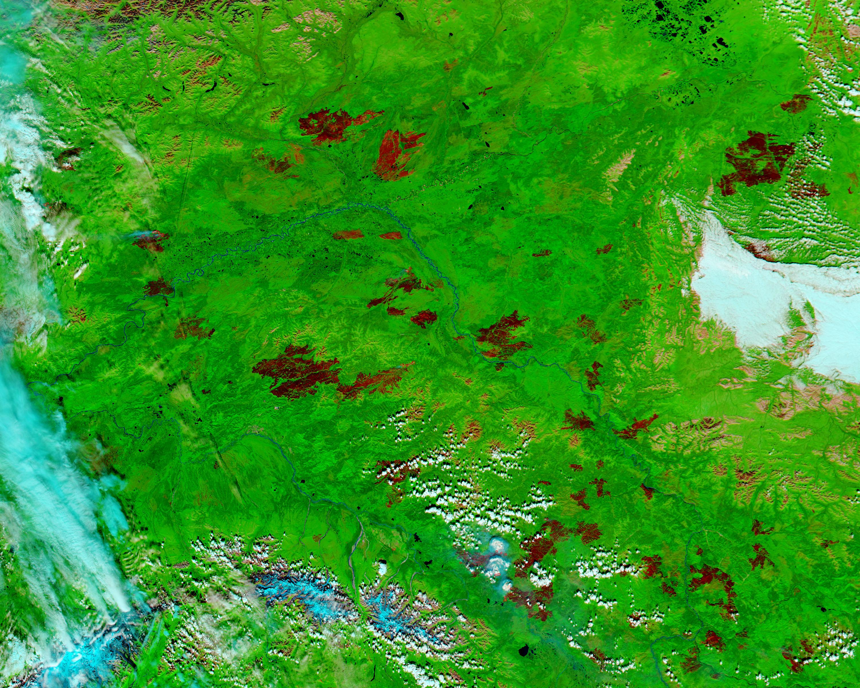 Cicatrices de fuegos en Alaska Central (falso color)