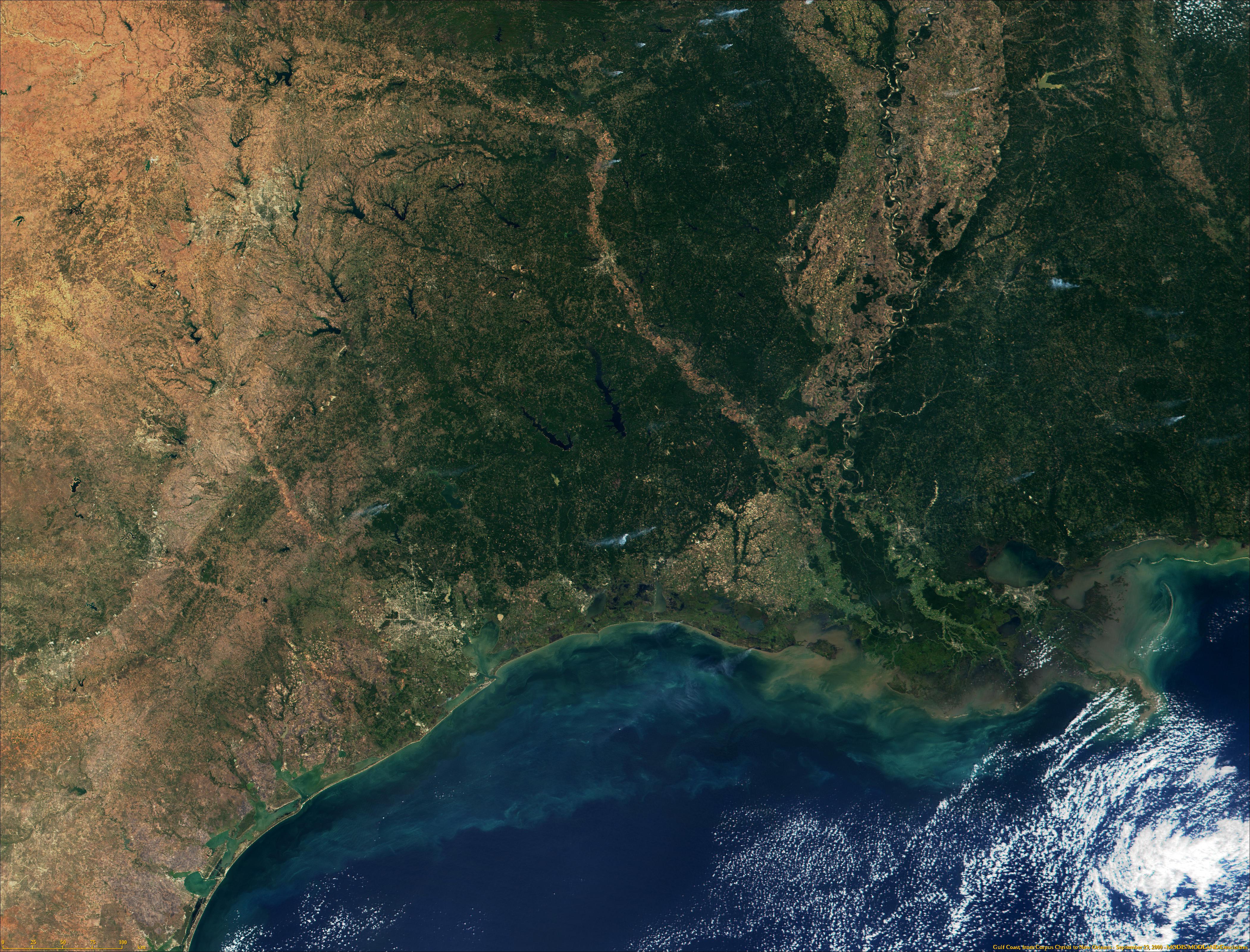 Costa del golfo de Mexico