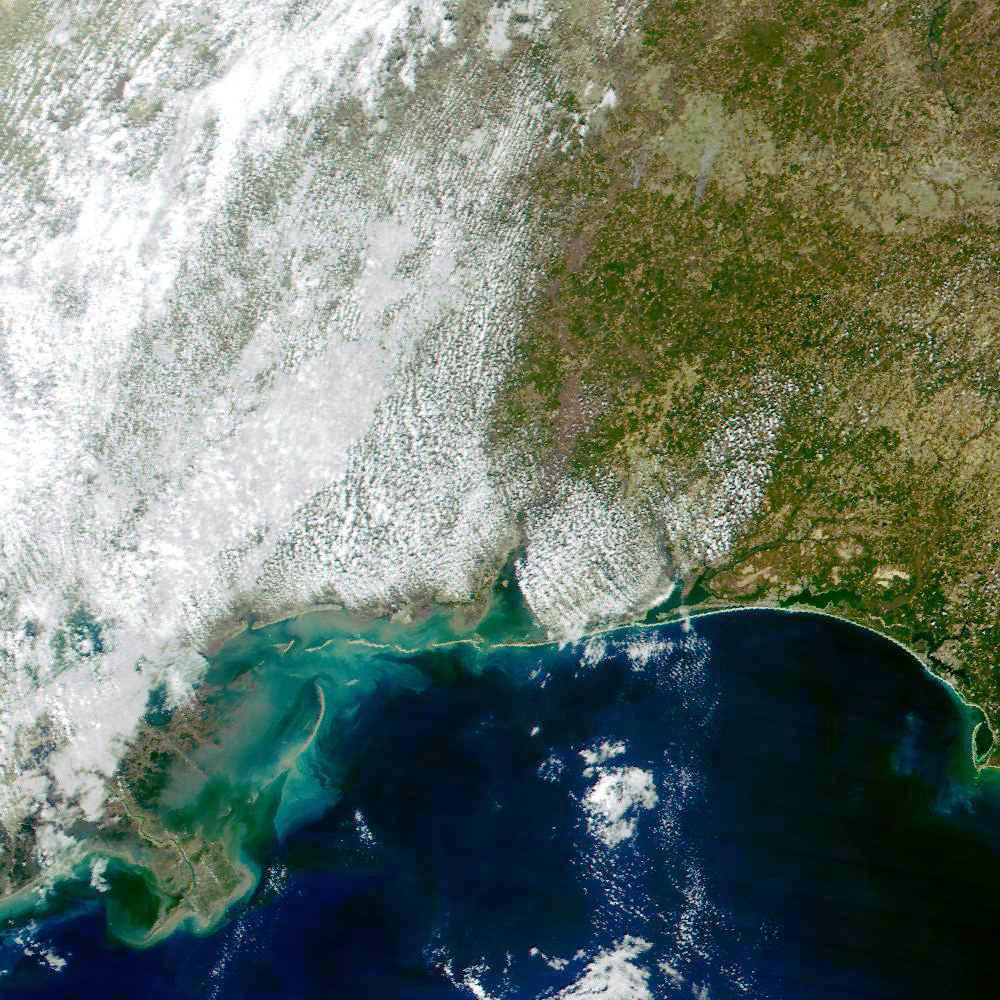 Mississippi Delta and Northeastern Gulf of Mexico Coastline