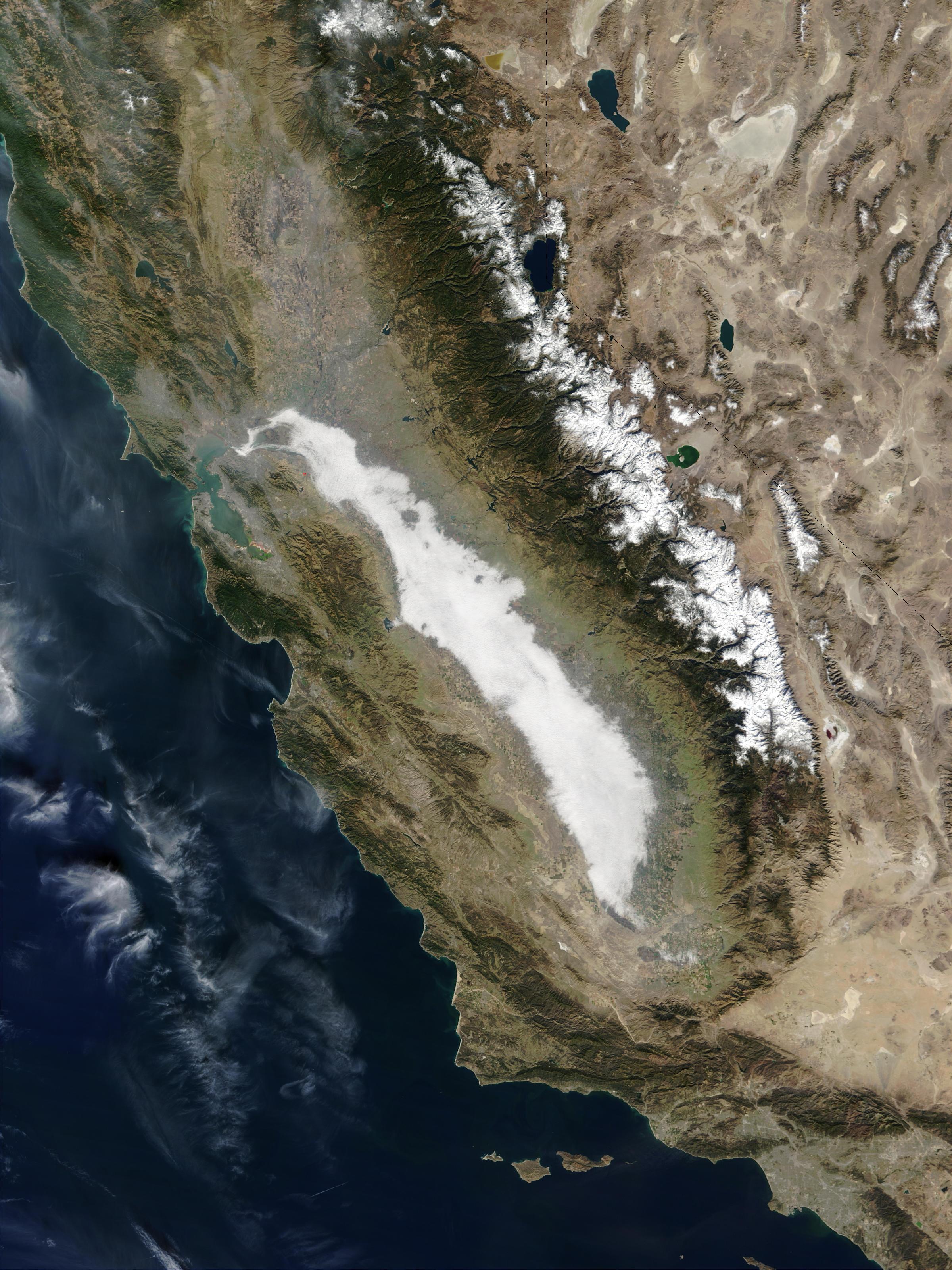 Densa niebla en el Centro de California