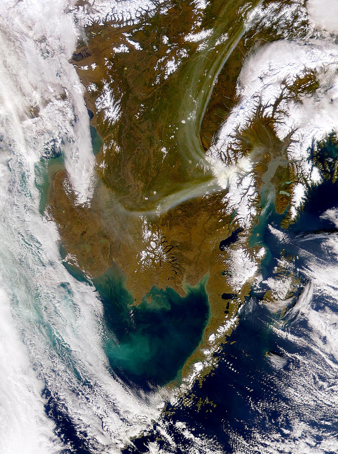 Floración en Alaska y Mar de Bering