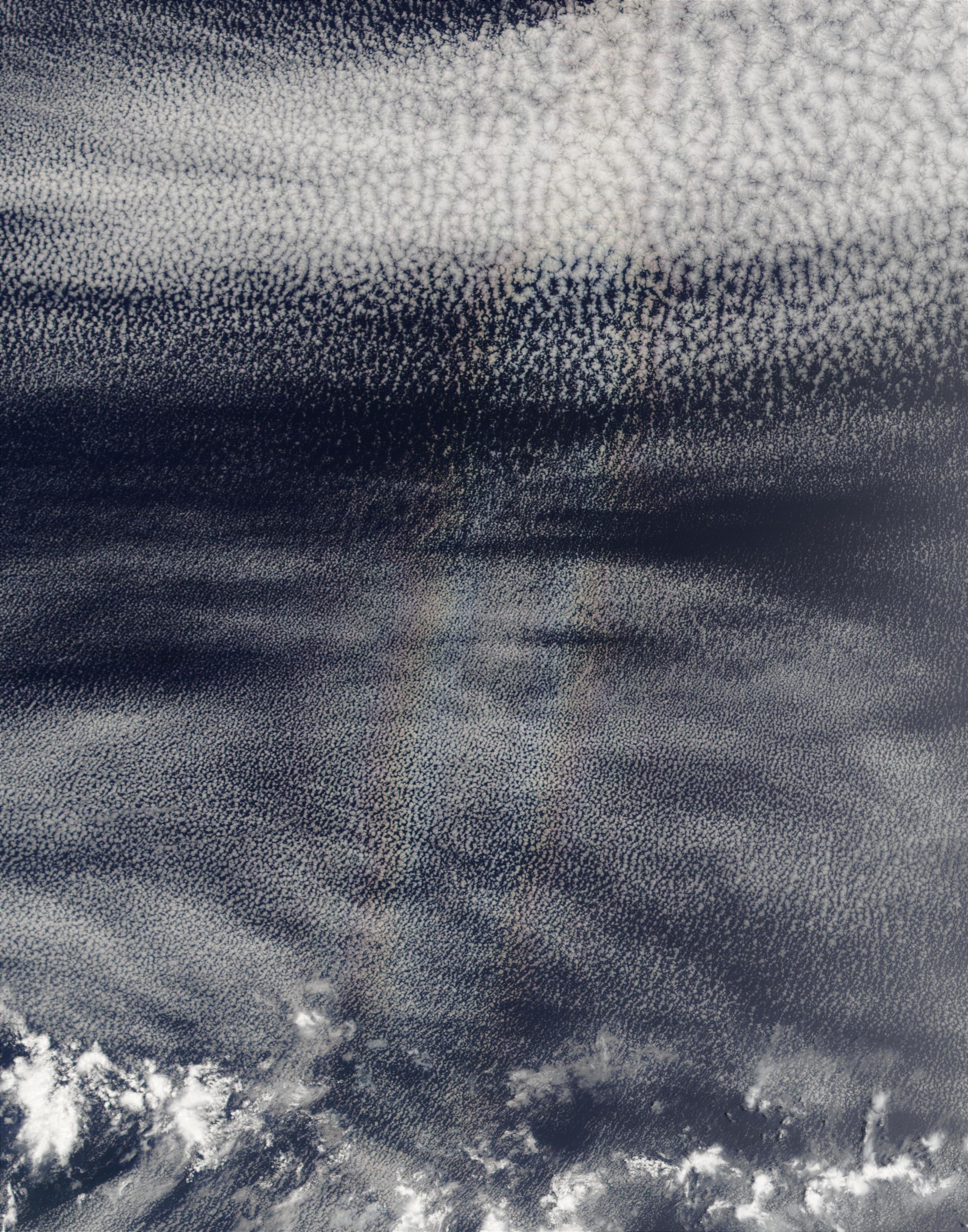 Gloria (o anthelion) encima de nubes stratocumulus en el Océano Pacífico