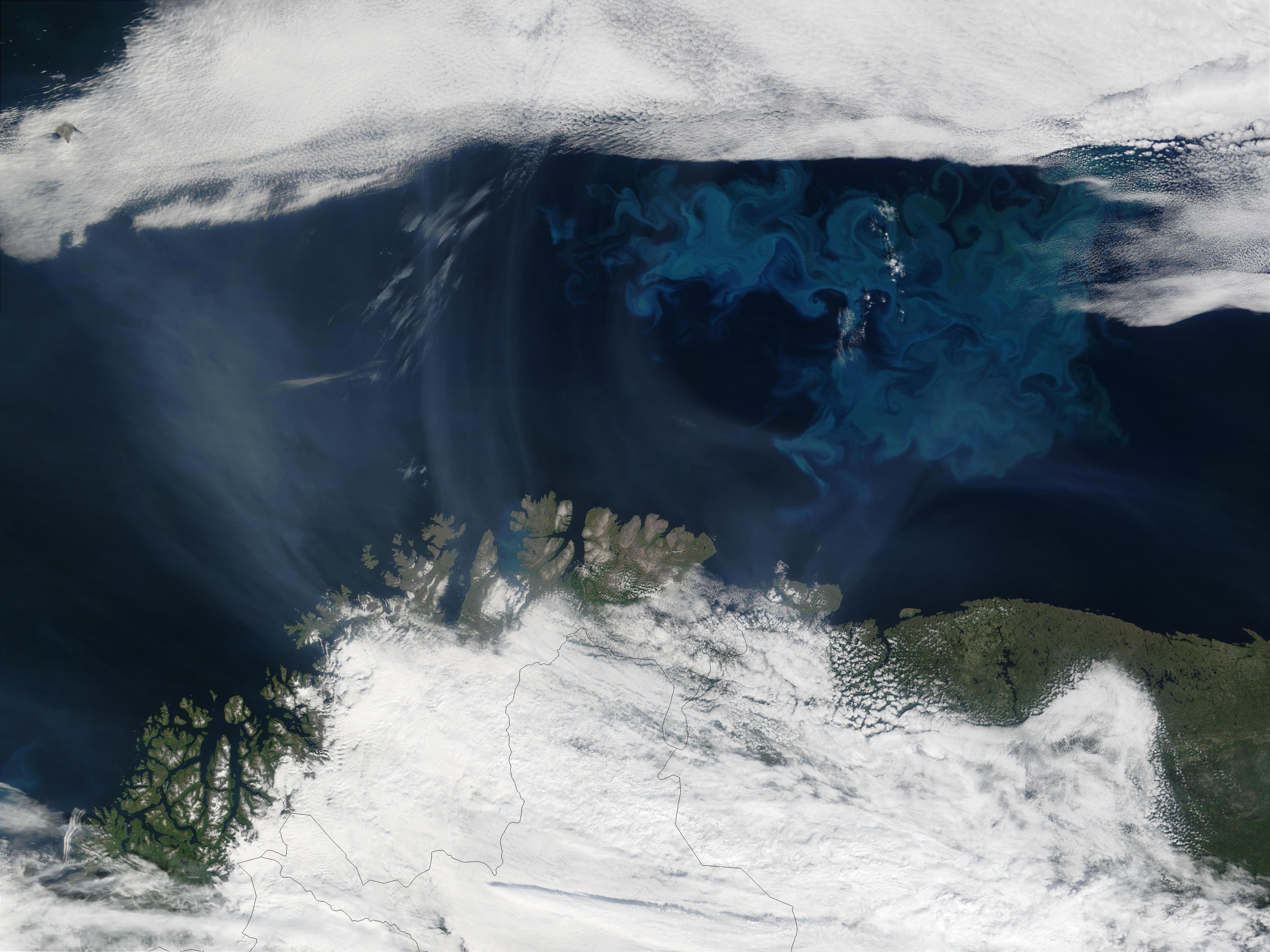 Humo de incendios proveniente de Saskatchewan (Canadá) y proliferación de fitoplancton cerca del norte de Noruega