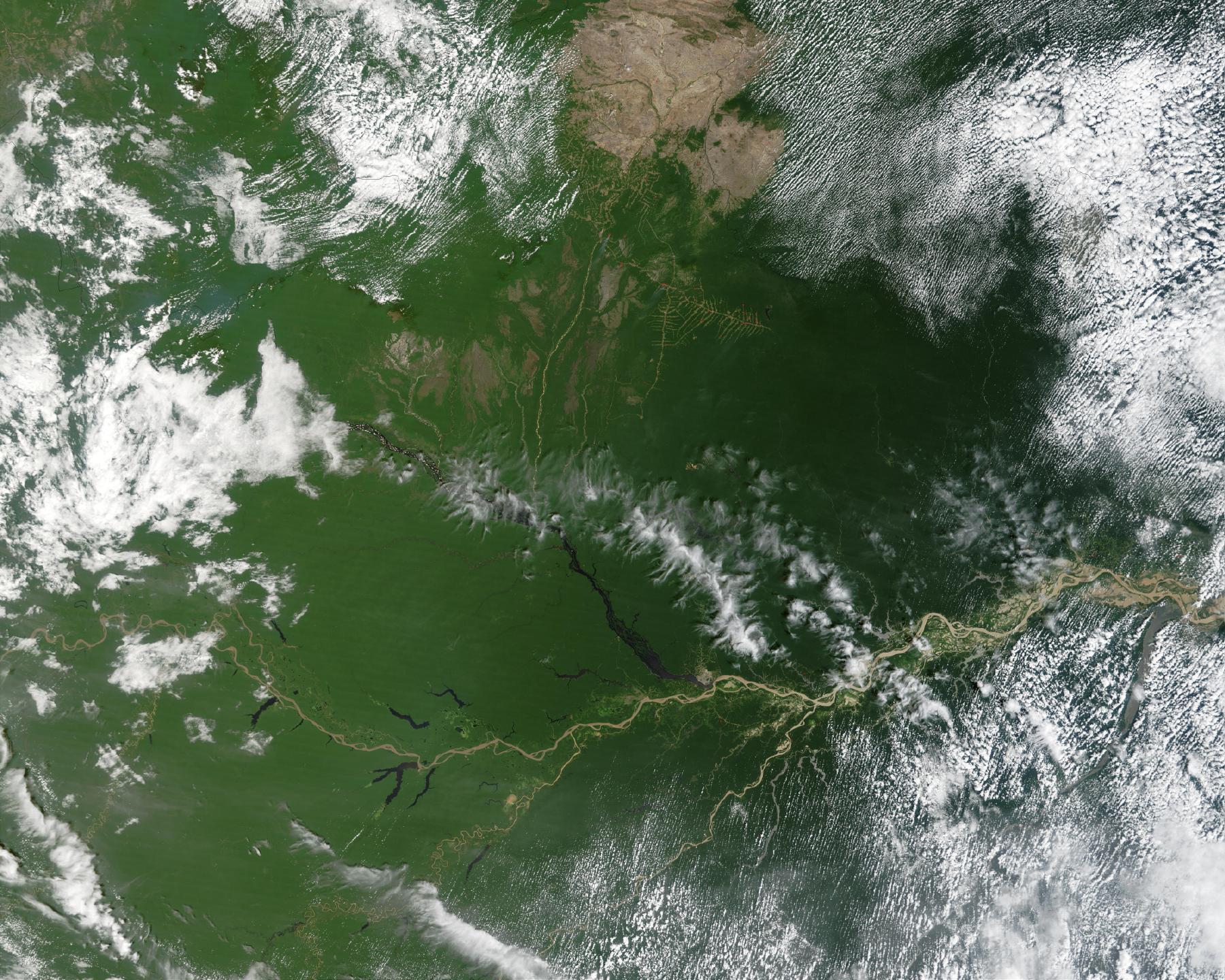 Satellite Image, Photo of the Amazon River, Brazil