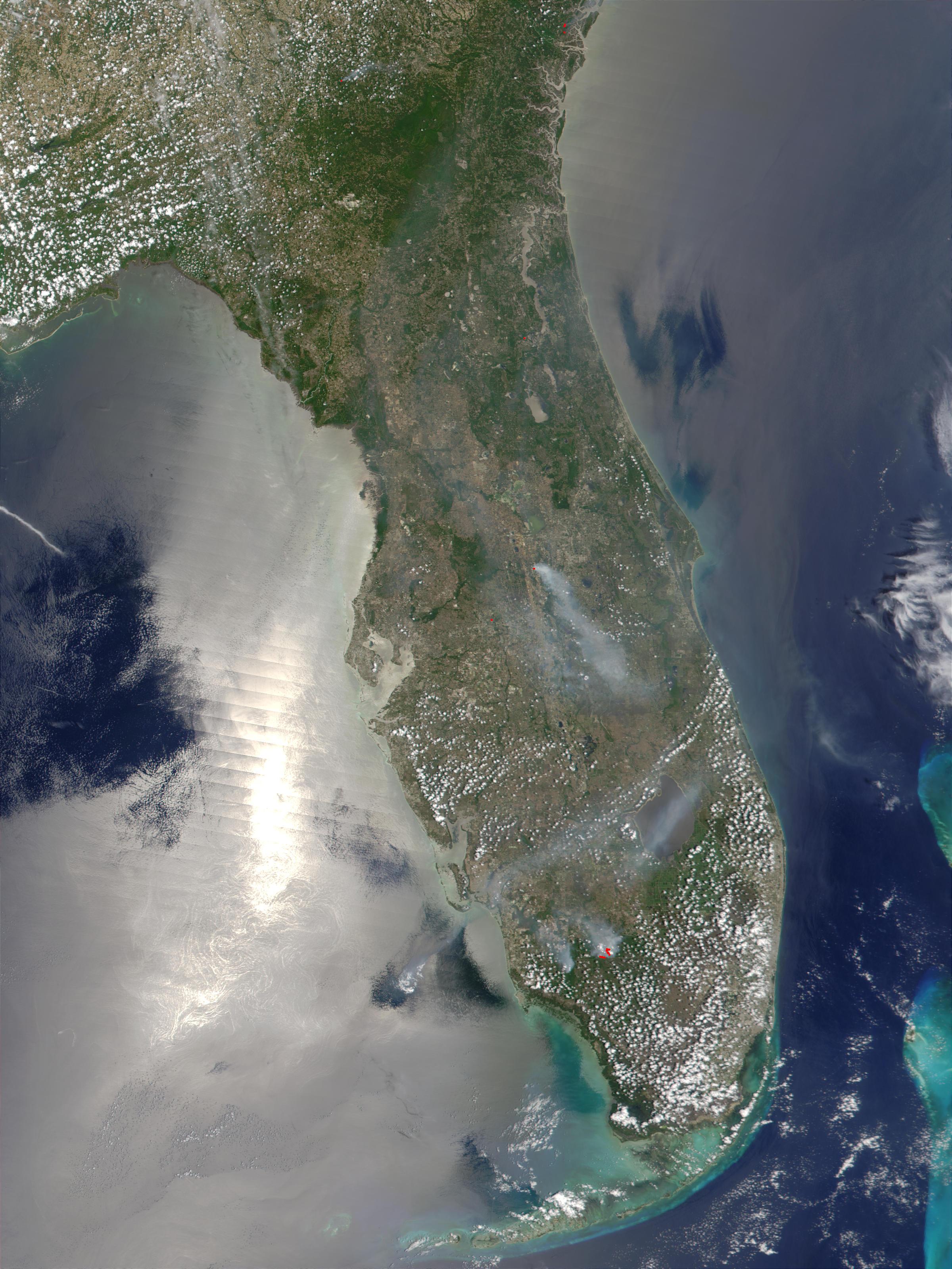 Incendio forestal en Florida