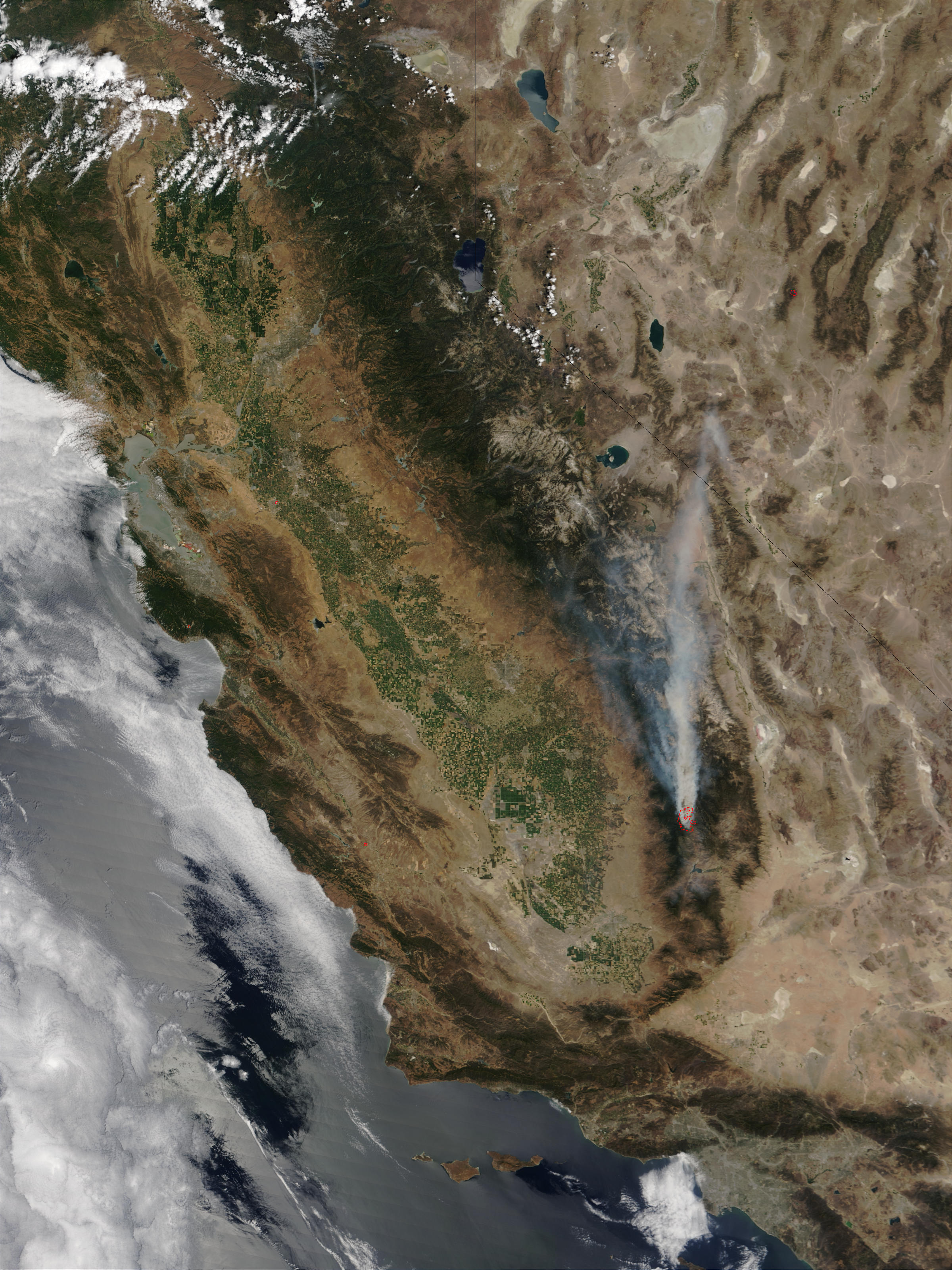 Incendios McNalley y Pines en California