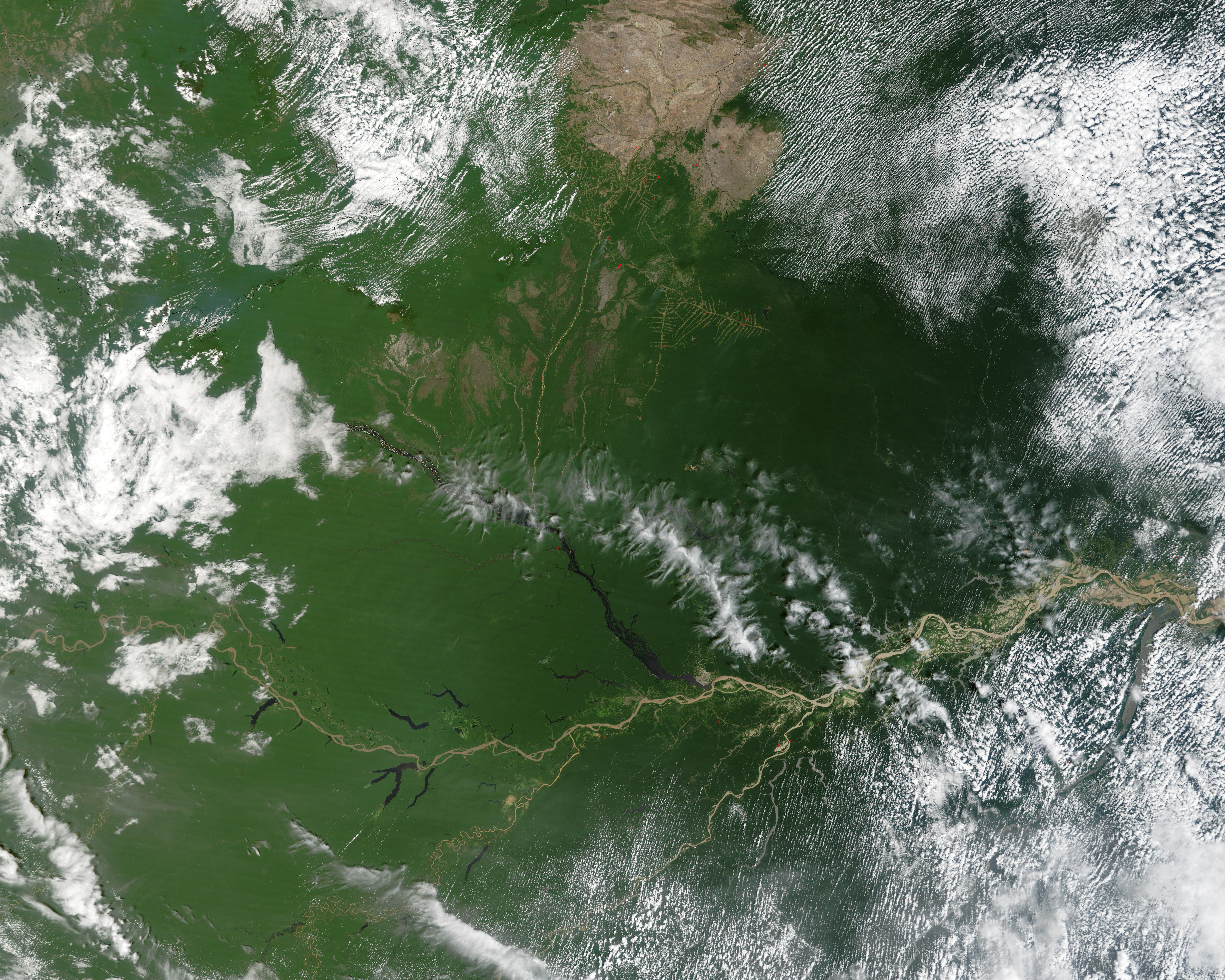 Fires in the Amazon Basin of Brazil