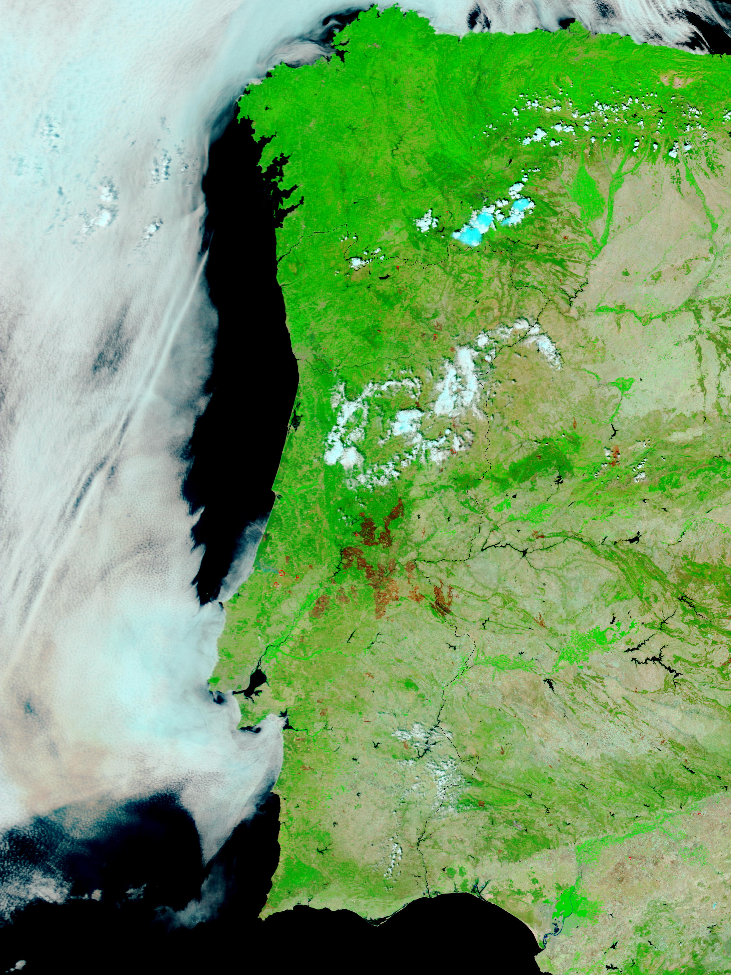 Incendios y cicatrices de los Incendios a través de Portugal