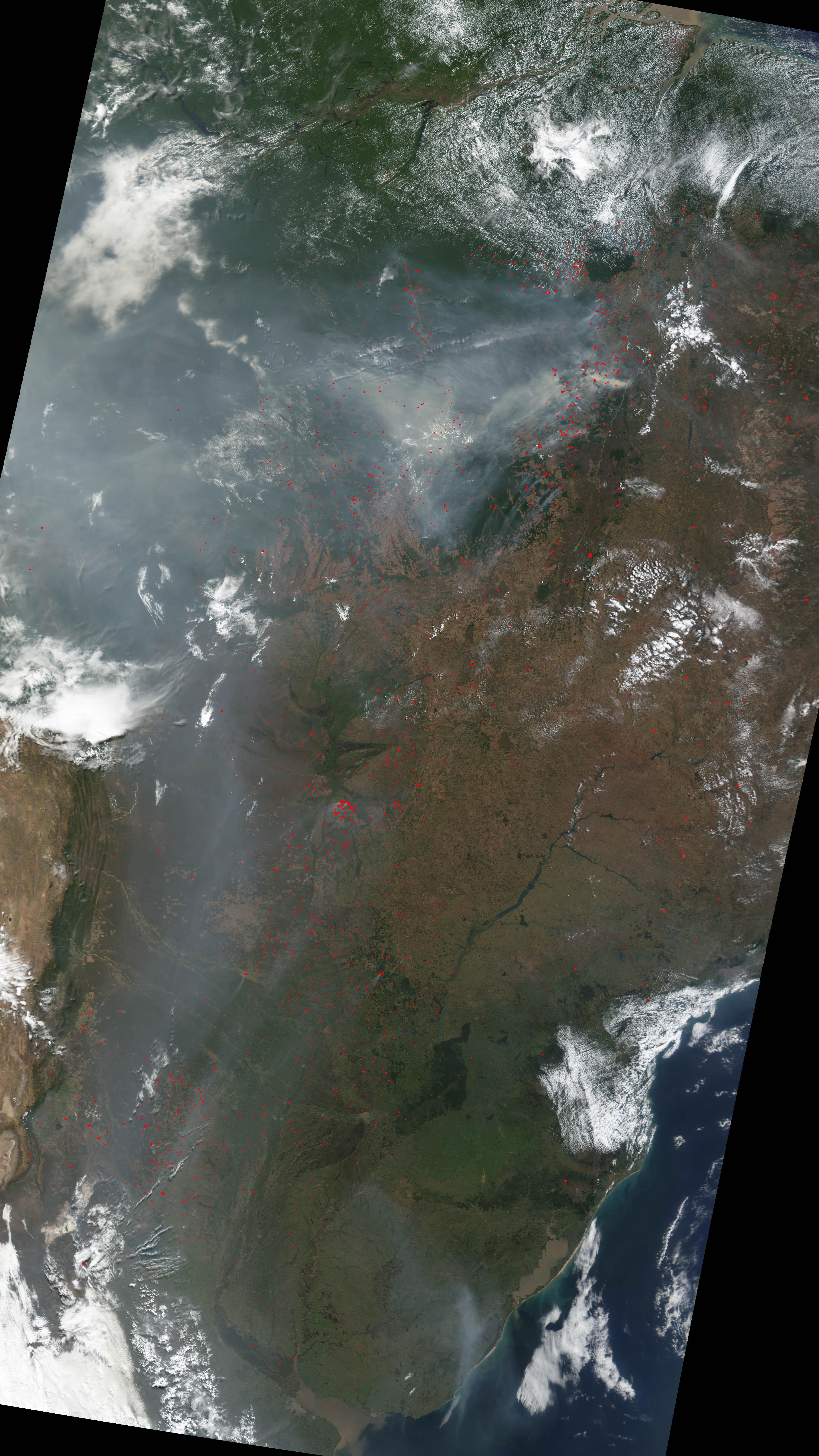 Incendios y deforestación en Brasil