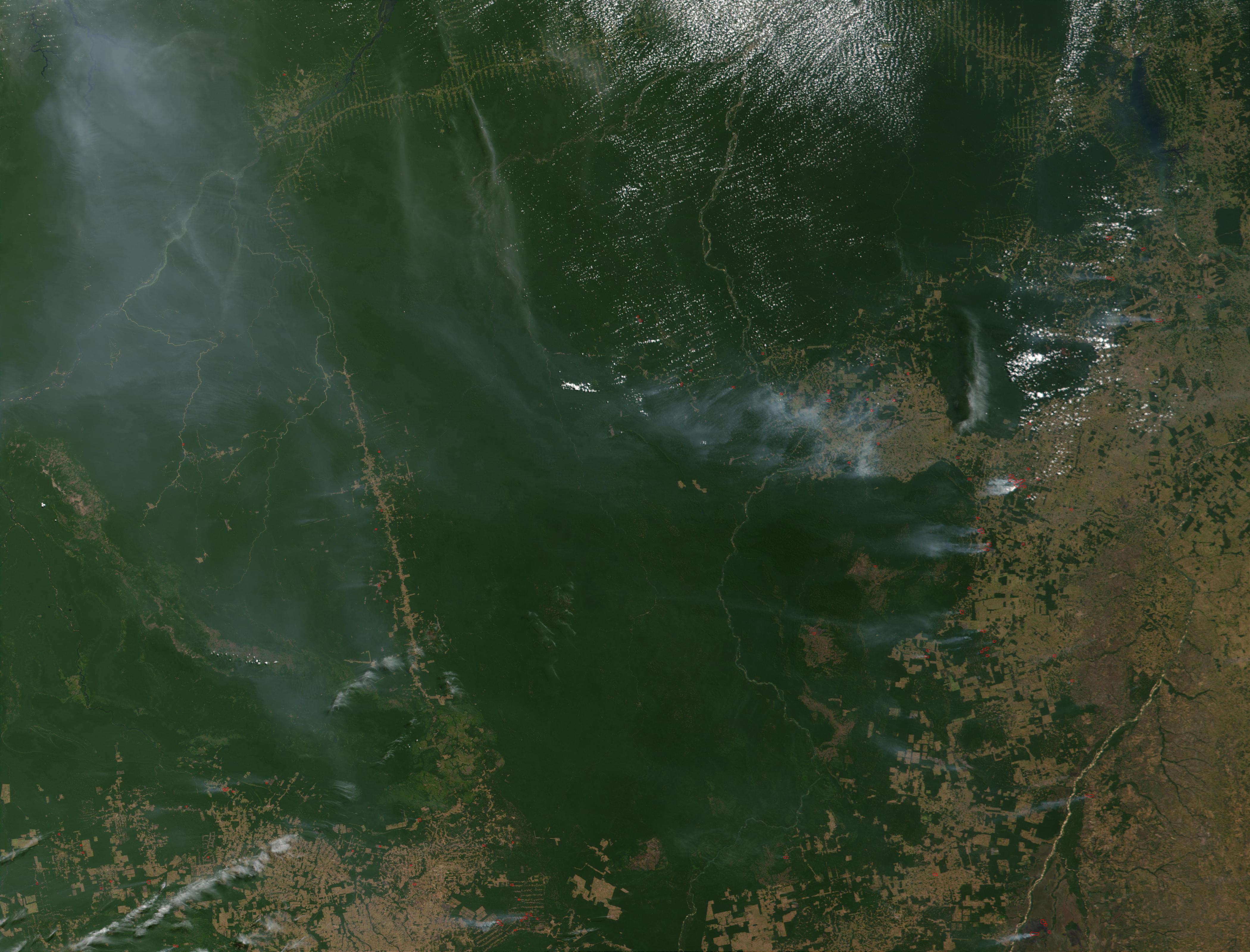Incendios y deforestación en el estado de Pará, Brasil
