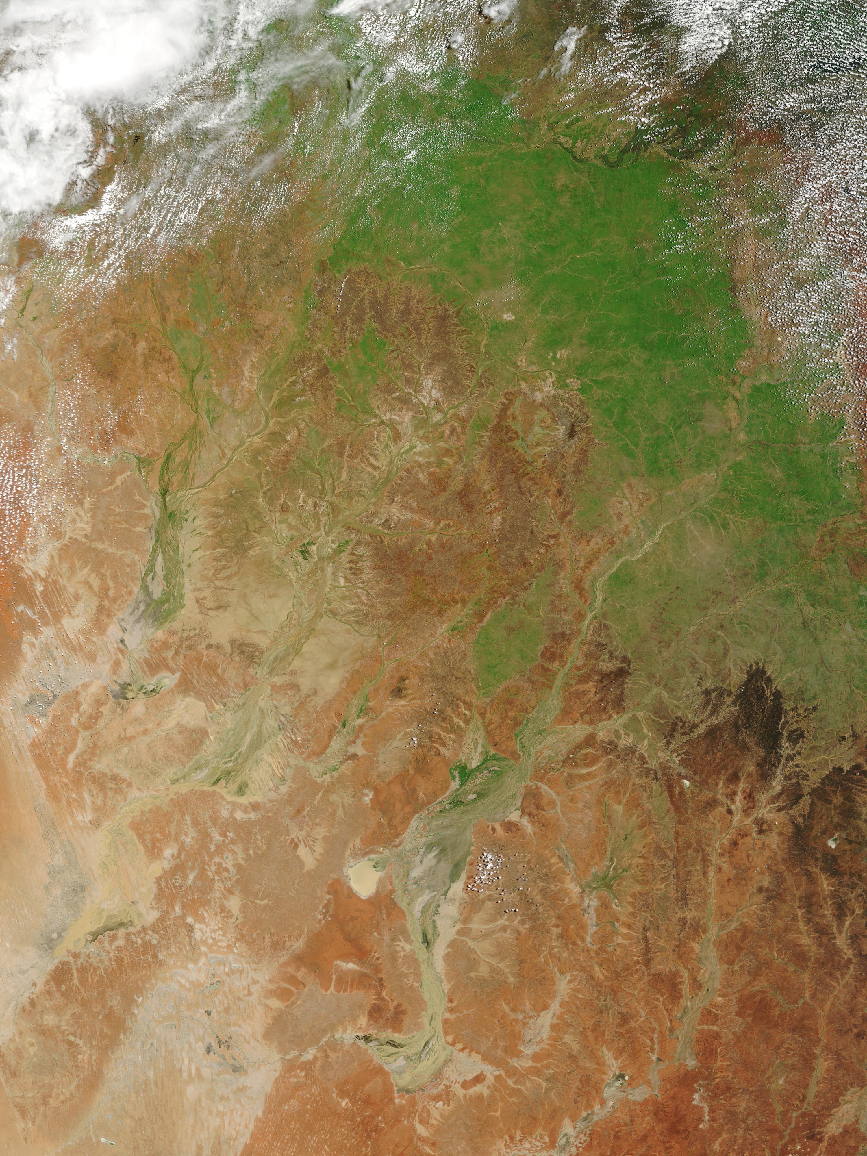 Inundaciones y verdecimiento en Queensland, Australia