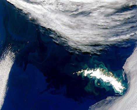Islas Georgias del Sur