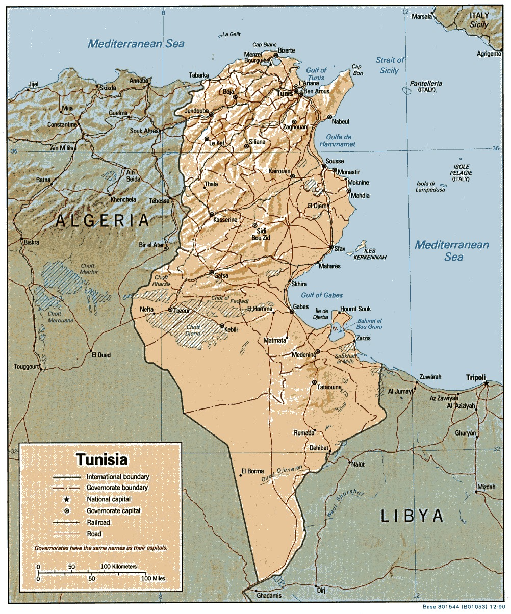 Tunisia Shaded Relief Map