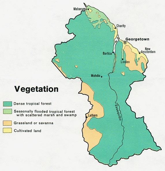 Mapa de Vegetación de la Guyana