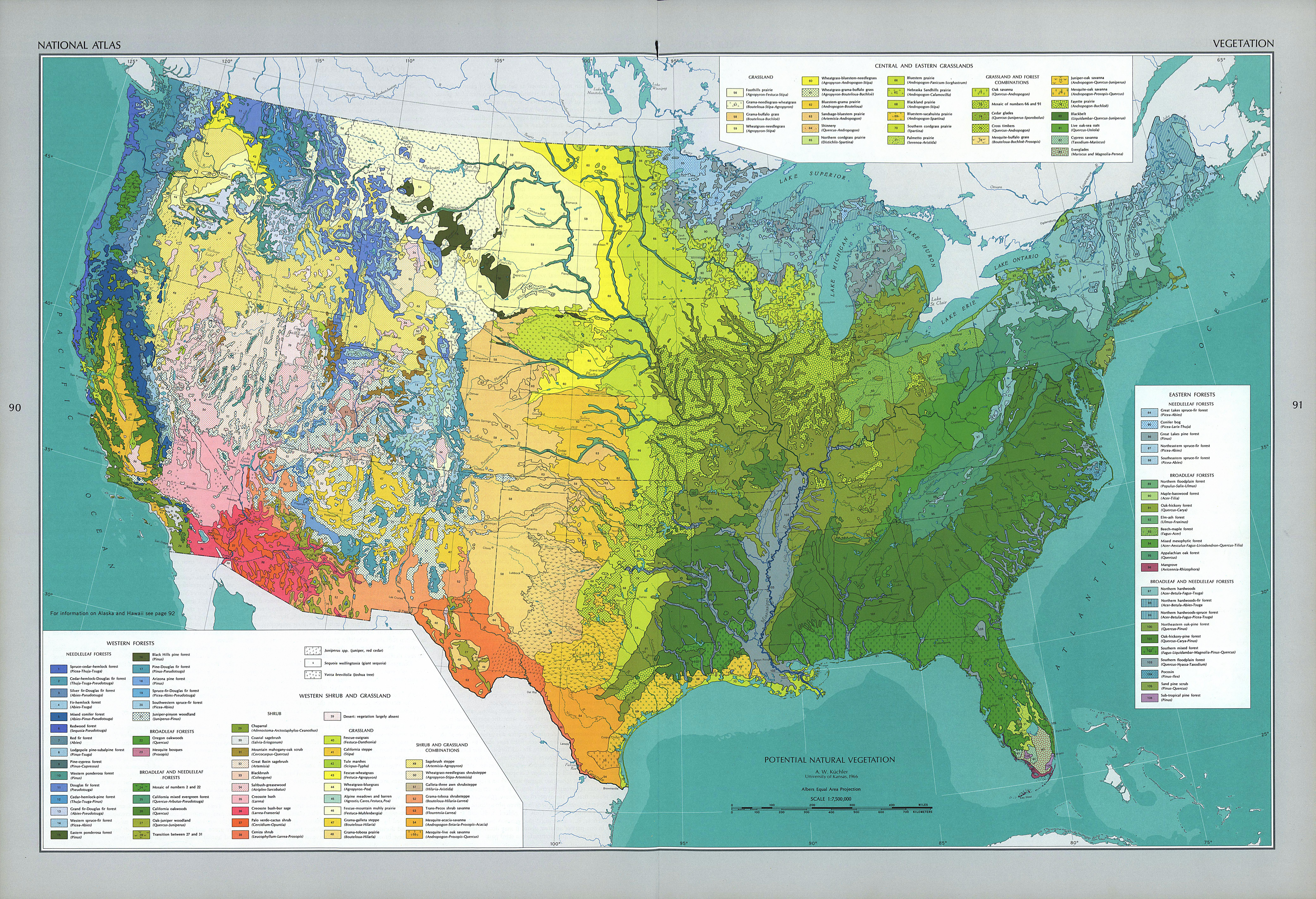 United States Vegetation Map