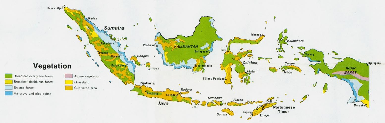 Mapa de la Vegetación de Indonesia