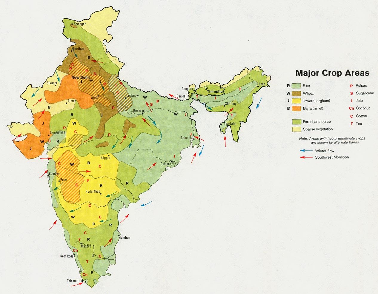 Mapa de los Principales Cultivos de India