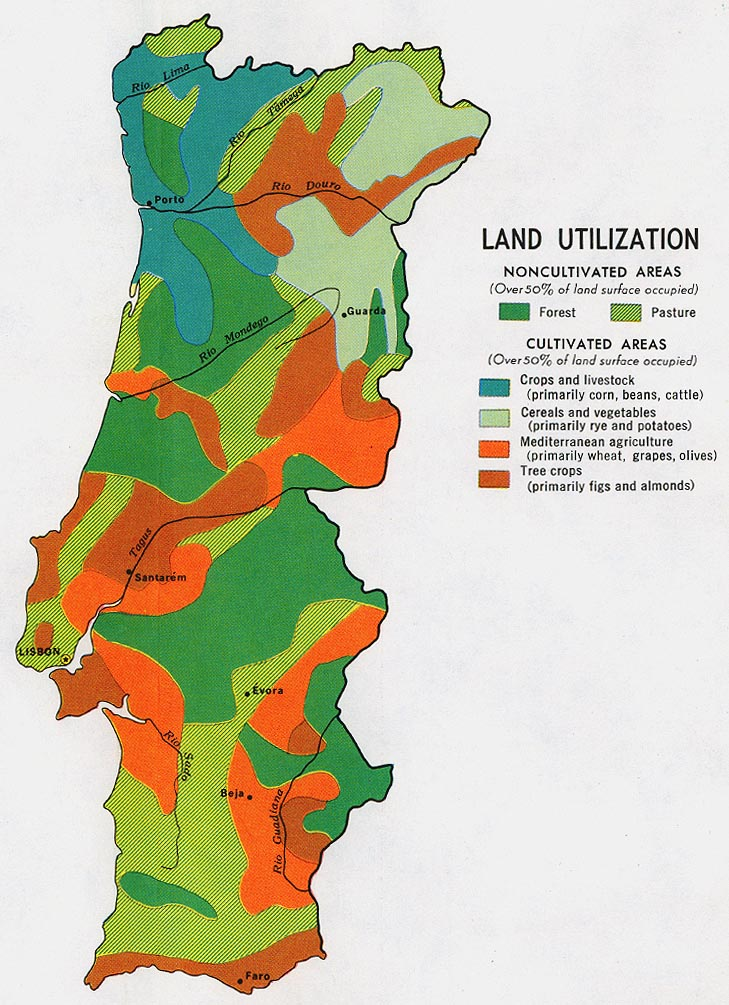 Portugal Land Use Map