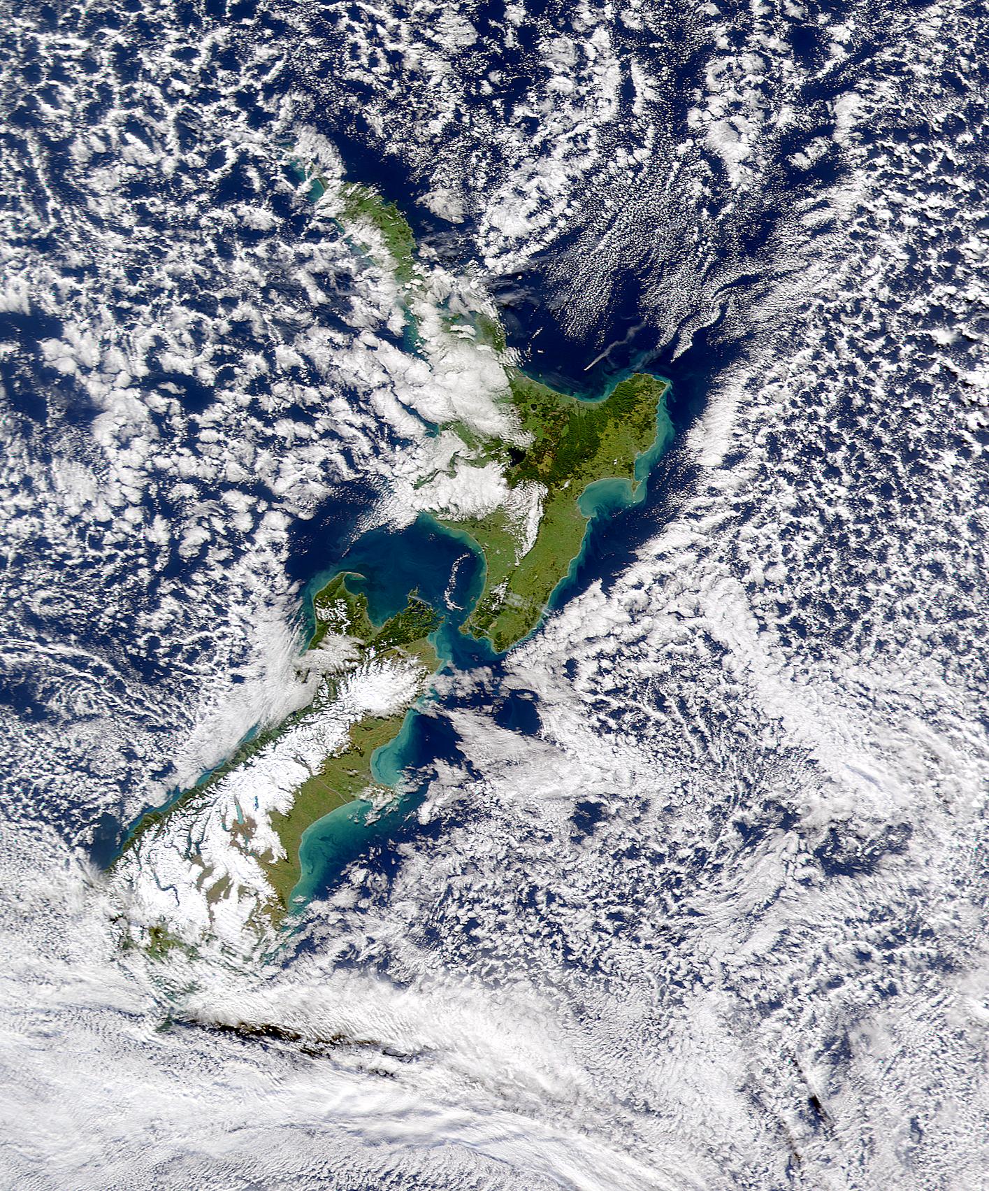 Whakaari/White Island Eruption Plume