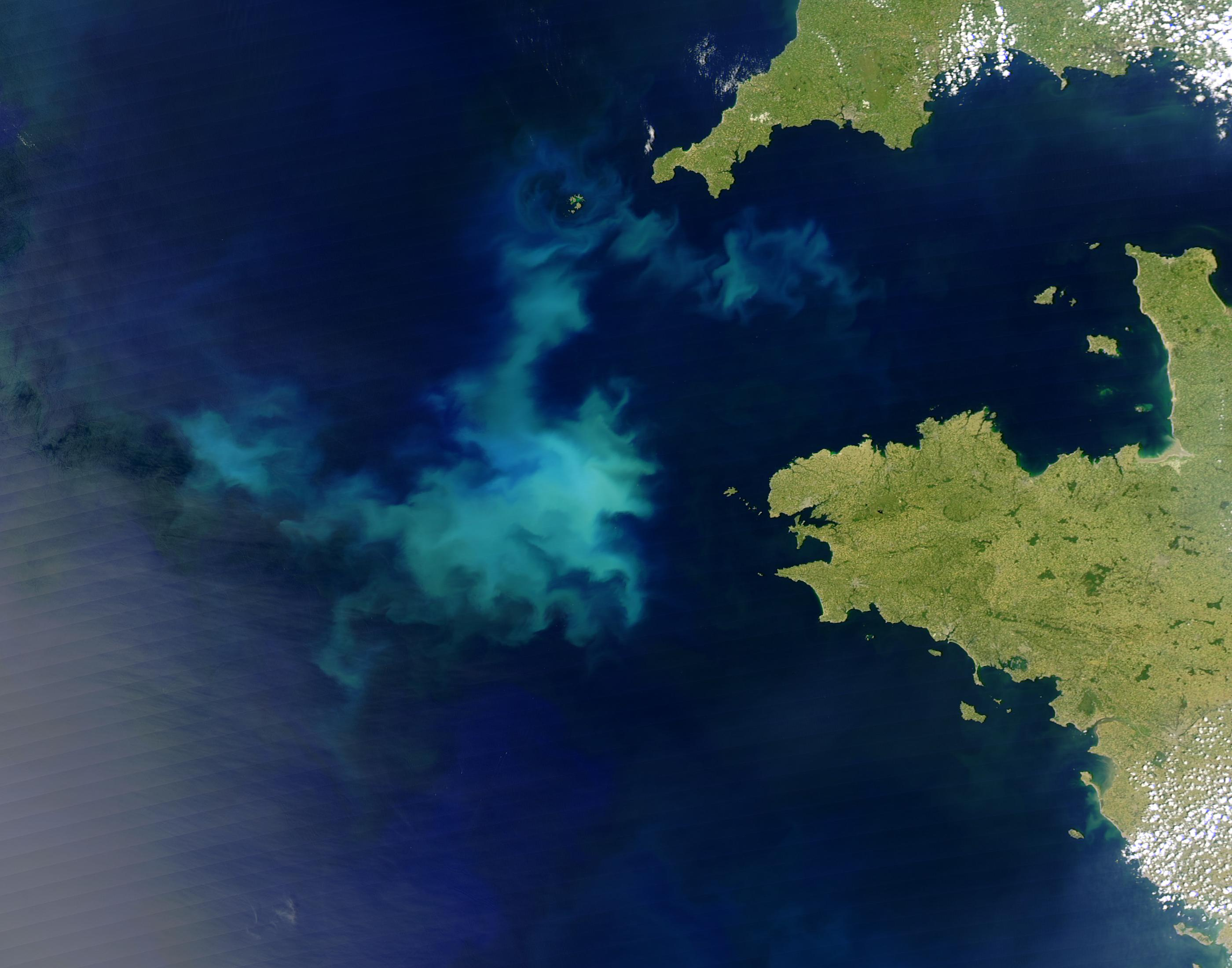 Coccolithophore bloom off Brittany, France
