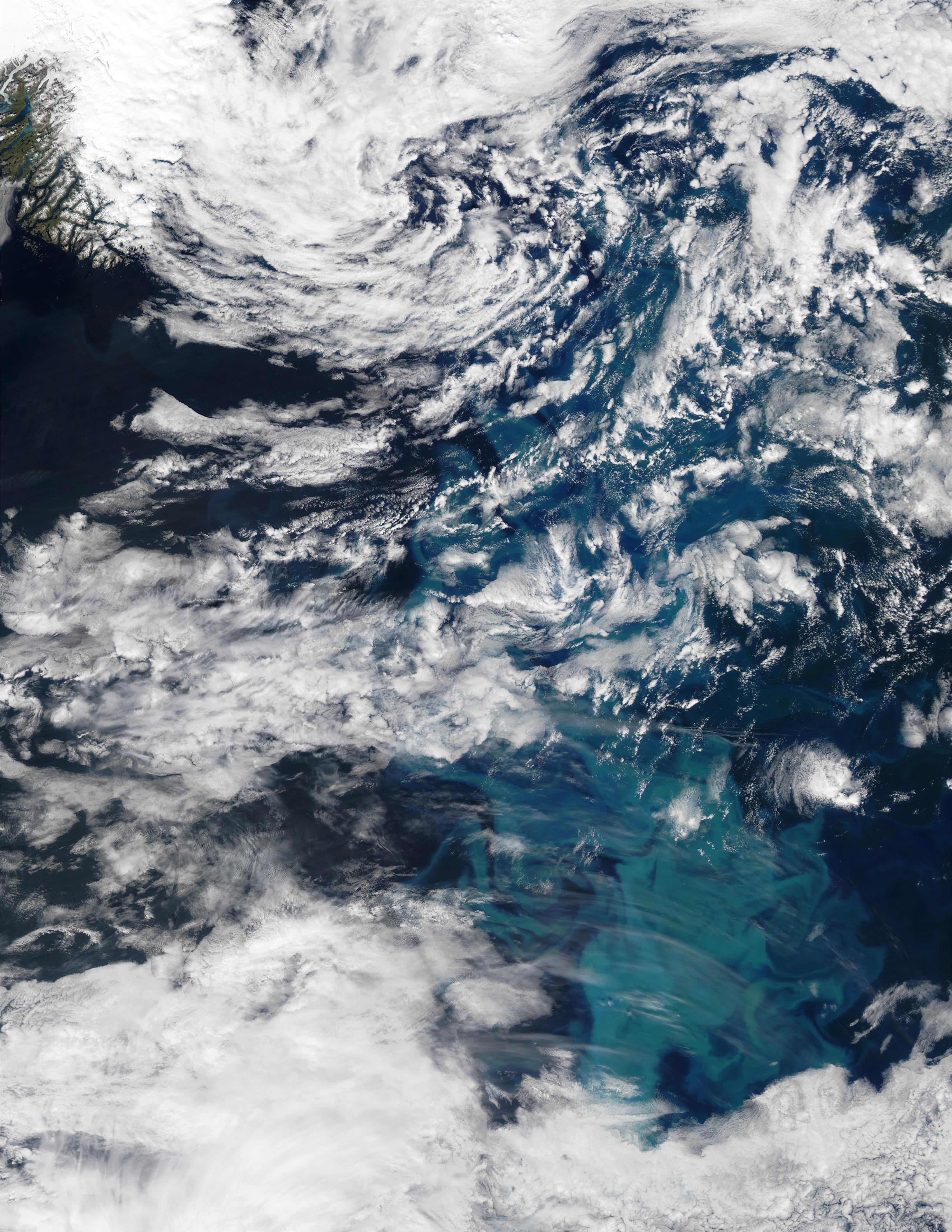 Proliferación de fitoplancton al sureste de Groenlandia