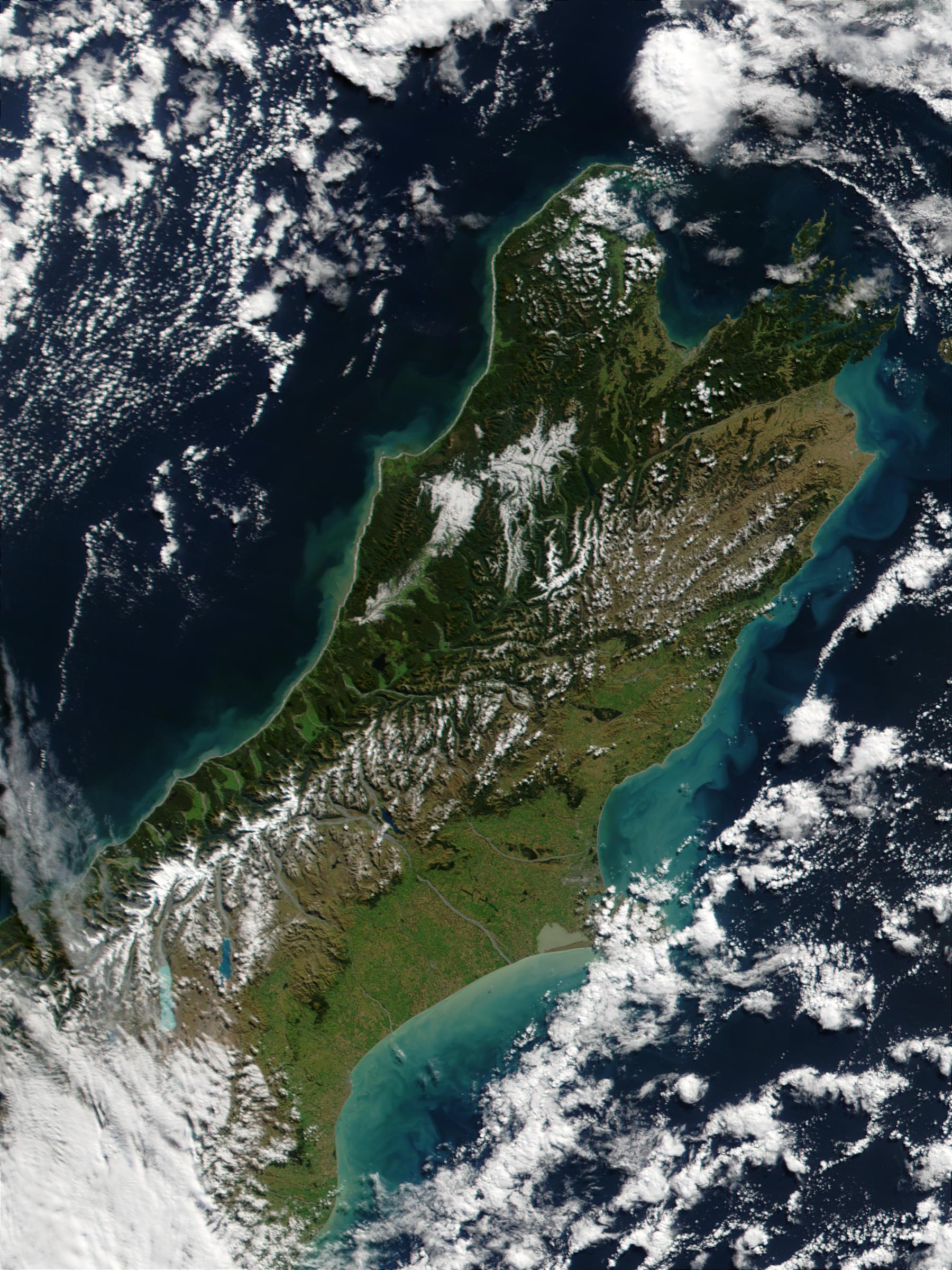 Proliferación de fitoplancton alrededor de Nueva Zelanda