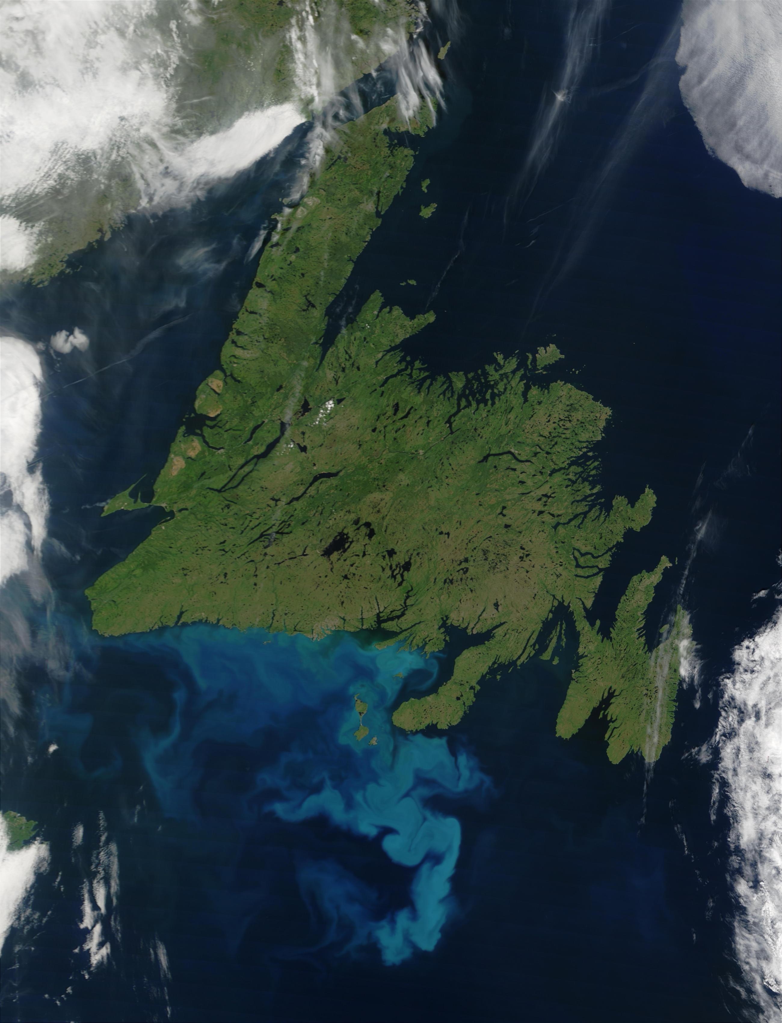 Proliferación de fitoplancton cerca de Terranova, Canadá