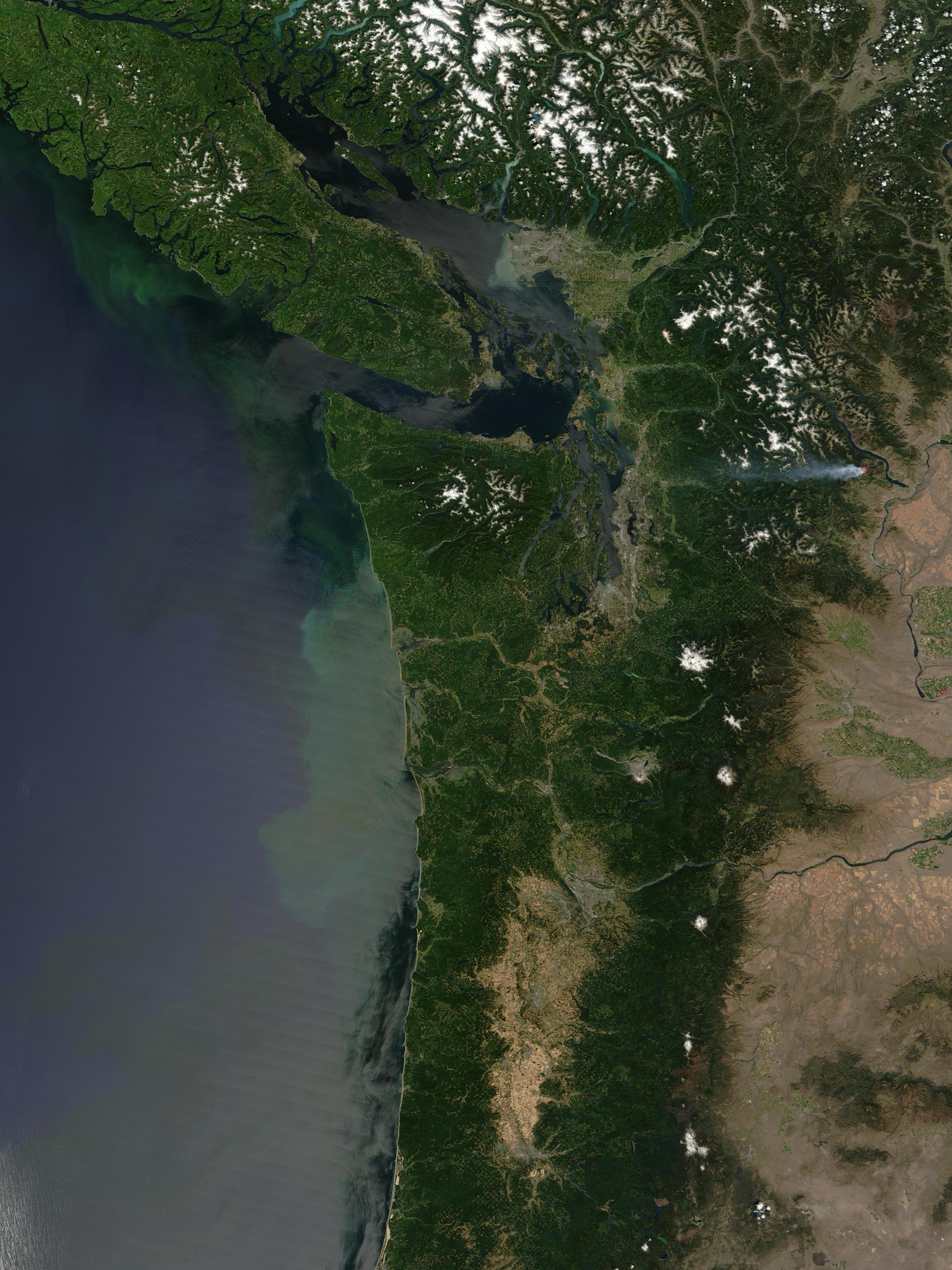 Proliferación de fitoplancton cerca de la regíon del Noroeste Pacífico, Estados Unidos