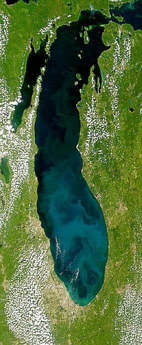 Proliferación en el Lago Míchigan