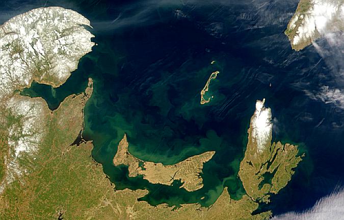 Proliferaciones marinas y Penachos alrededor de la Isla del Príncipe Eduardo