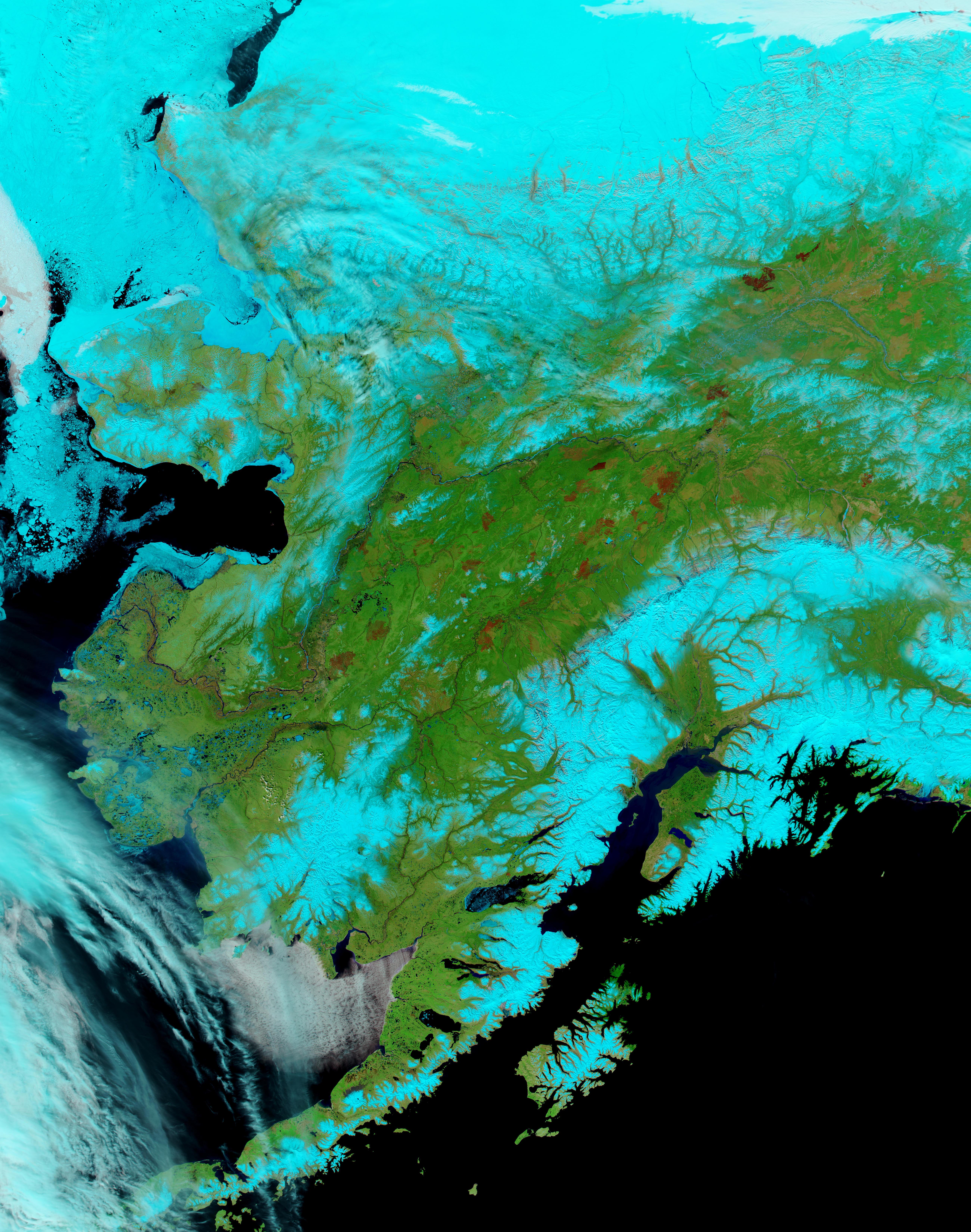 Viejas cicatrices de los incendios en Alaska Central