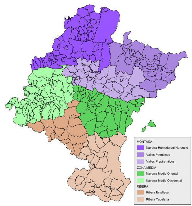 Mapa de Comarcas de Navarra 2008