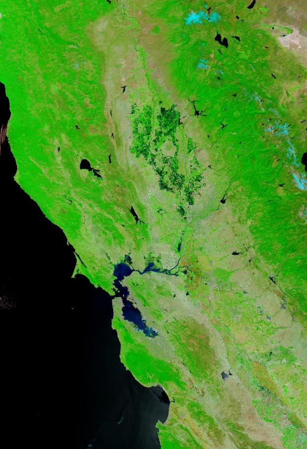 Delta del río de Sacramento/San Joaquínn, California (antes de la ruptura de dique, falso color)