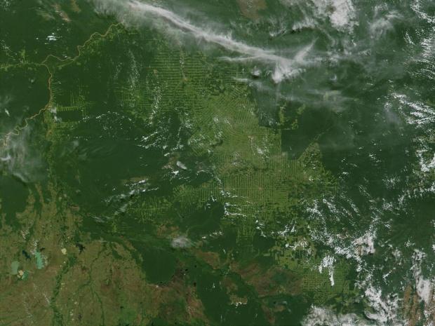Imagen, Foto Satelite de Deforestación a Gran Escala, Estado de Rondonia, Brasil