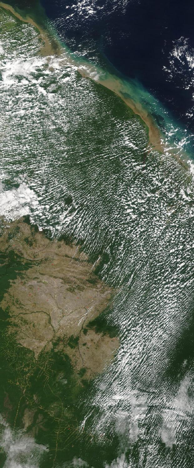 Imagen, Foto Satelite de Guyana